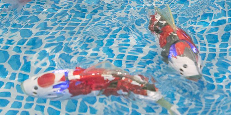 ロボット観賞魚「MIRO」