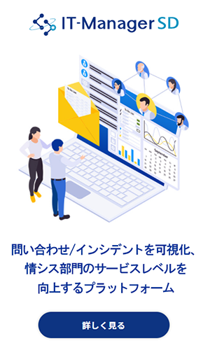 IT-Manager SD